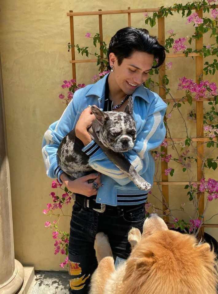 Chase Hudson with dog Image